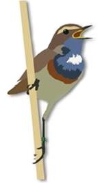 Cultuur vogels